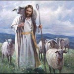 Behold the Lamb Photo
