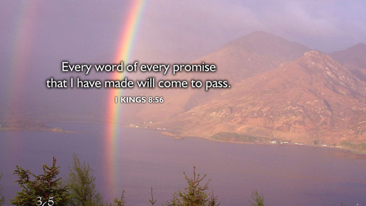 Word of Every Promise